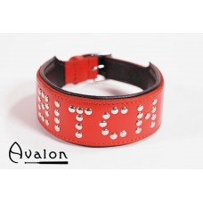 Avalon - YOU'RE MY - Collar Bitch - Rød